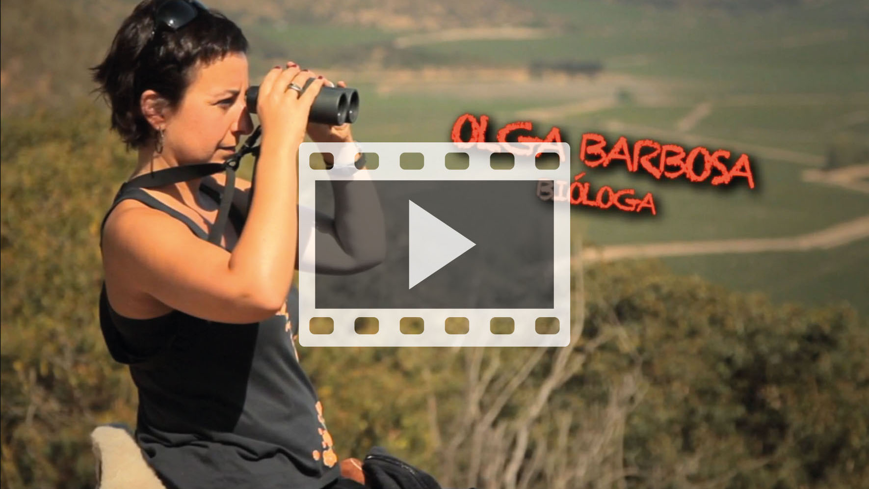 olga-barbosa-video-web