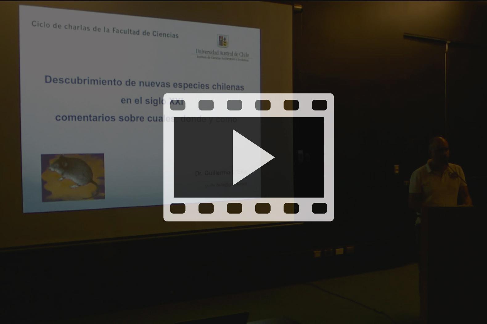 video-01-web