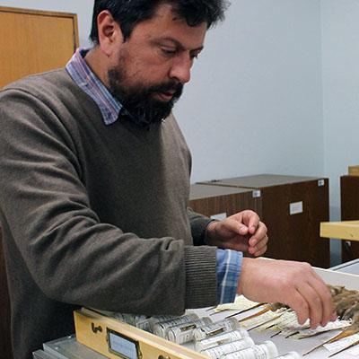 Guillermo DElia